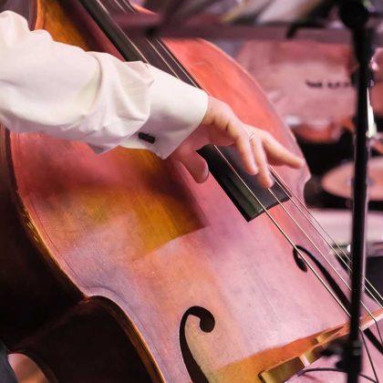 Online double bass classes